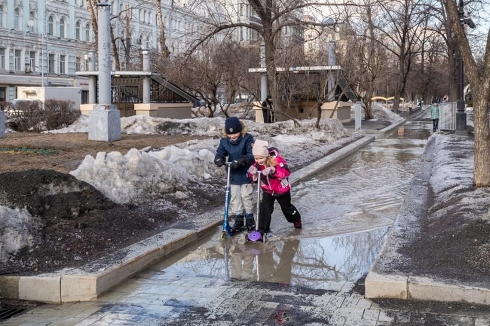 На экологию Ростова и области влияет масса факторов