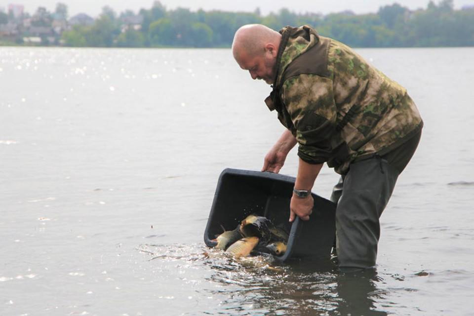 В Тагильский пруд выпущено более 3 тысяч мальков