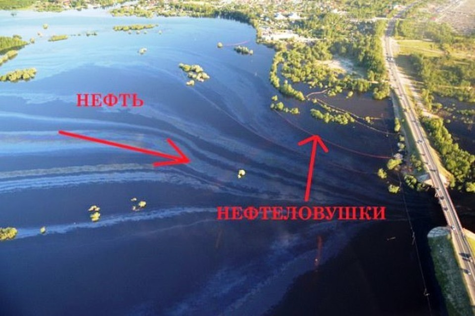 """Природнадзор ХМАО возбудил дело по разливу нефти под Нефтеюганском. Фото: соцсеть, """"Это Юганск, детка"""""""